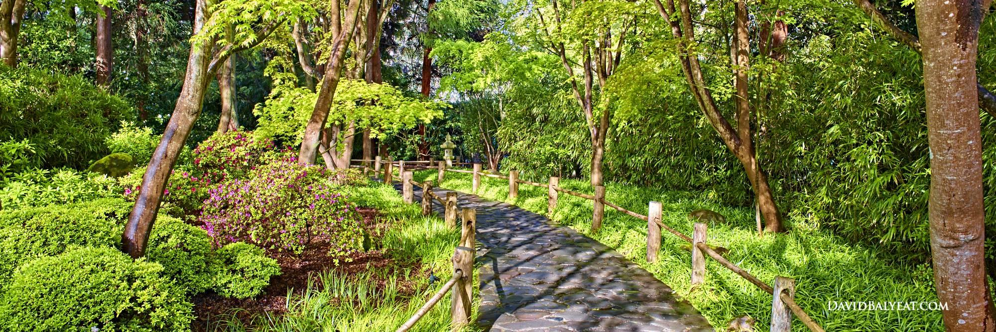 Botanical Garden San Francisco Japanese Section Stroll Panoramic HD Photography