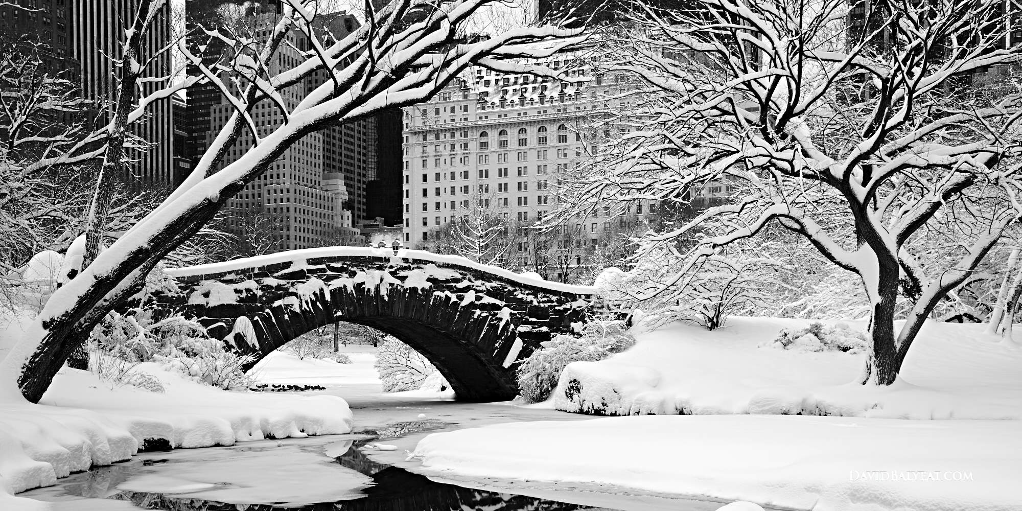 Central Park snow winter paradise New York City bridge high definition HD photography