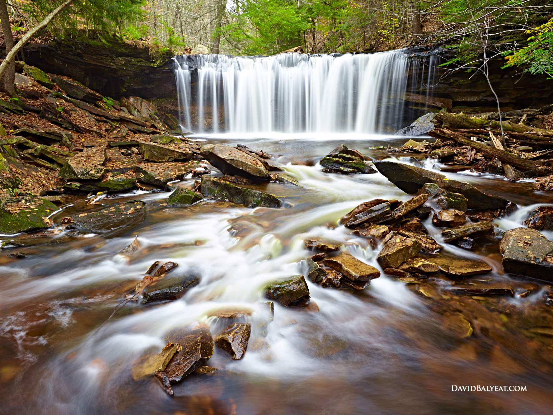 Ricketts Glen Autumn Fall Foliage waterfall high definition HD professional landscape photography