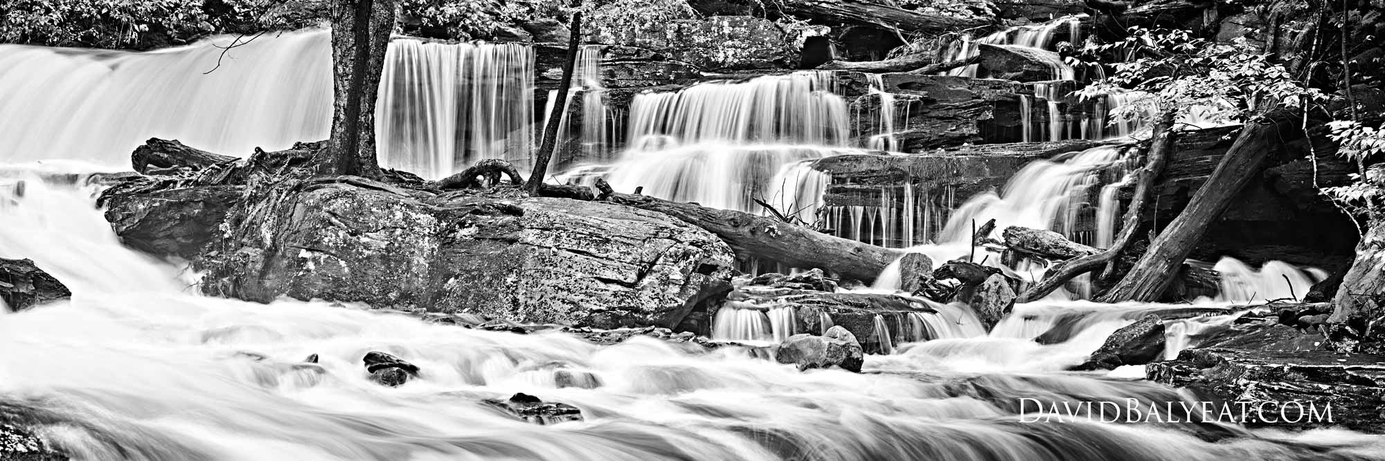 Ricketts Glen State Park waterfall black and white high-definition HD professional landscape photography