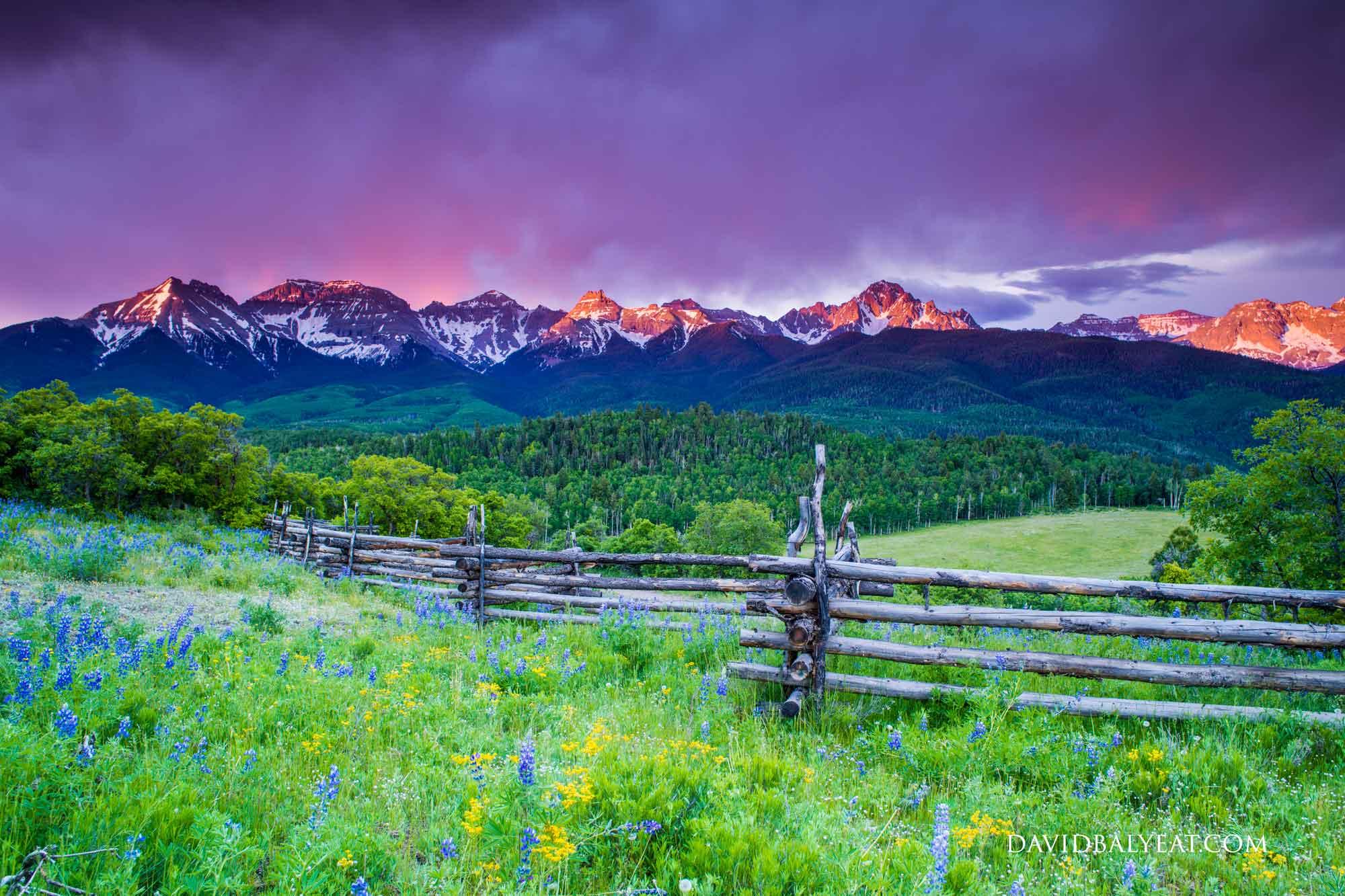 San Juan mountain range Colorado alpine paradise wildflowers high-definition HD professional landscape photography