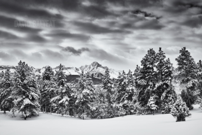 Winter In Black And White >> Black And White Images Balyeat Photography